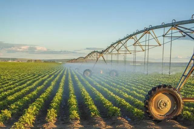 农业支持:国家财政拿416亿,支持两大农业发展方向!